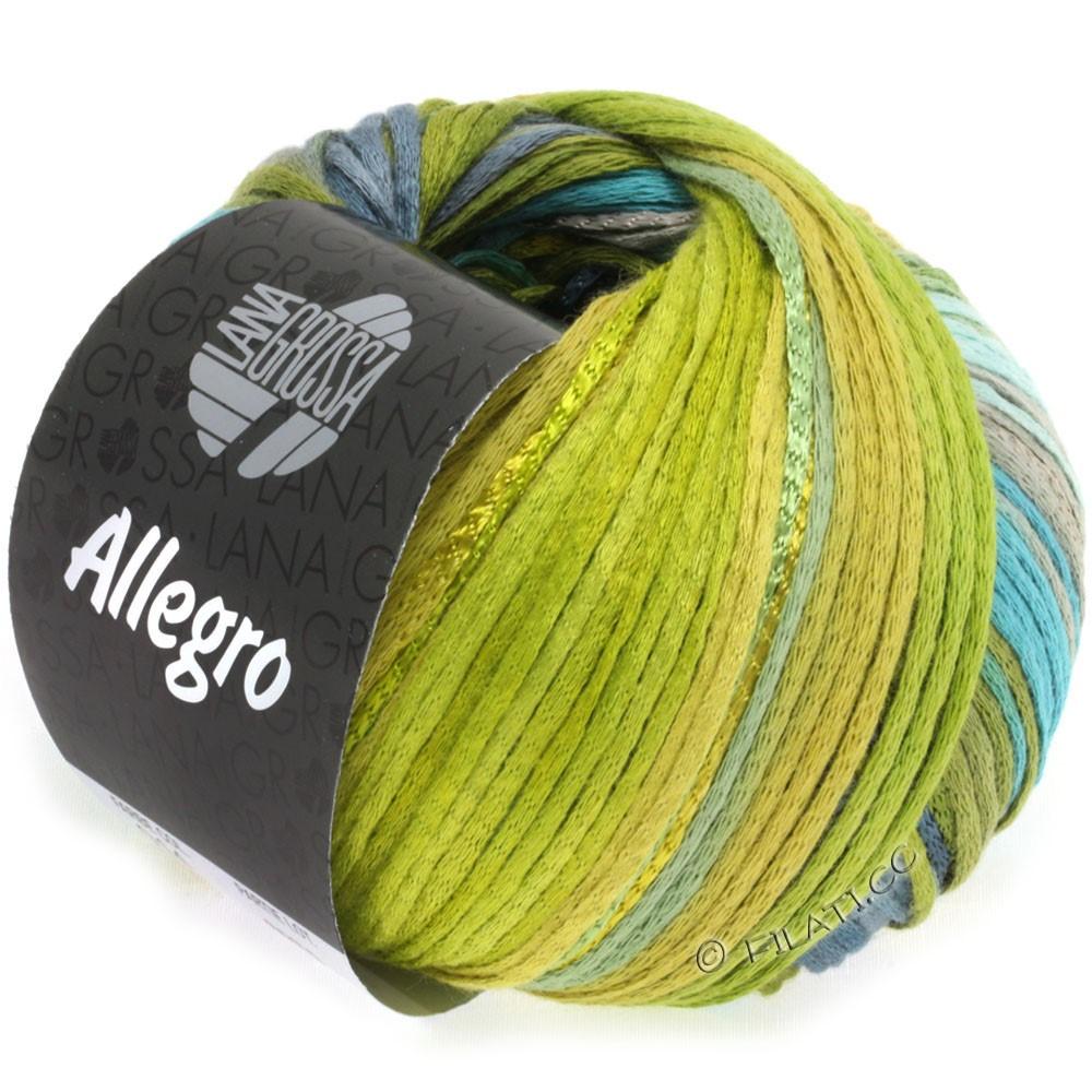 Lana Grossa ALLEGRO | 014-петроль/оливково-зелёный /синяя сталь/зеленый сено/мох зеленый