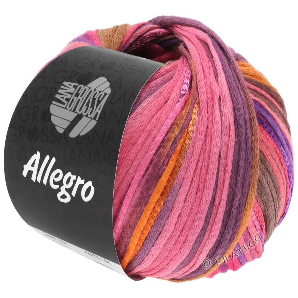 Lana Grossa ALLEGRO | 031-пинк/оранжевый/фиолетовый/цвет корицы