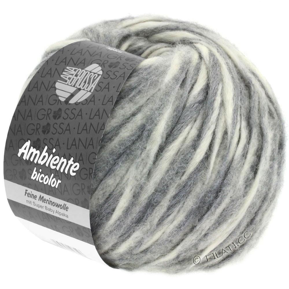 Lana Grossa AMBIENTE Bicolor | 101-чисто-белый/серый