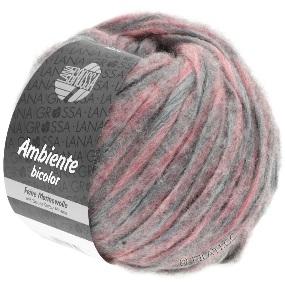 Lana Grossa AMBIENTE Bicolor | 104-вереск/серый