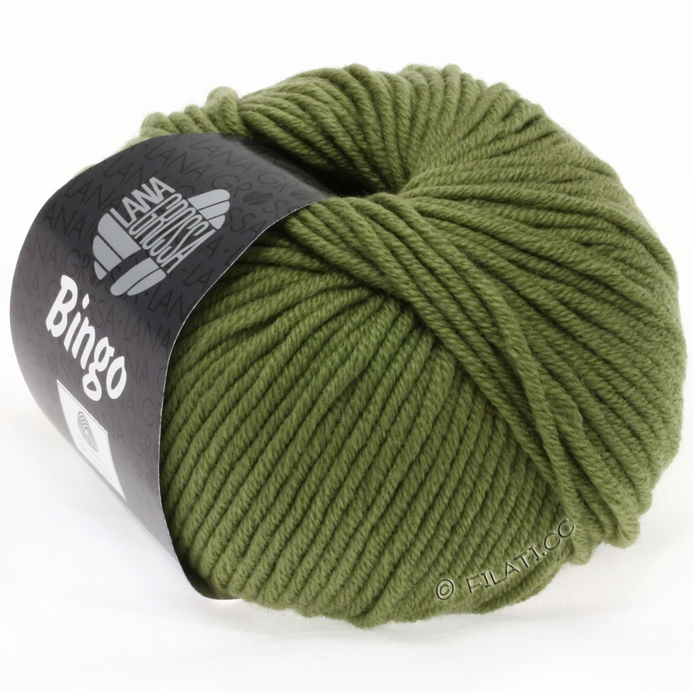 Lana Grossa BINGO  Uni/Melange/Print уни/меланж/принт | 157-оливковый