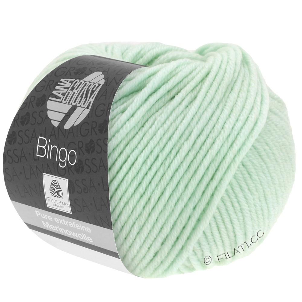 Lana Grossa BINGO  Uni/Melange/Print уни/меланж/принт | 176-бледно-зелёный