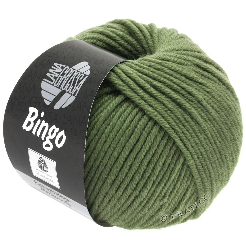 Lana Grossa BINGO  Uni/Melange/Print уни/меланж/принт | 180-зелёный