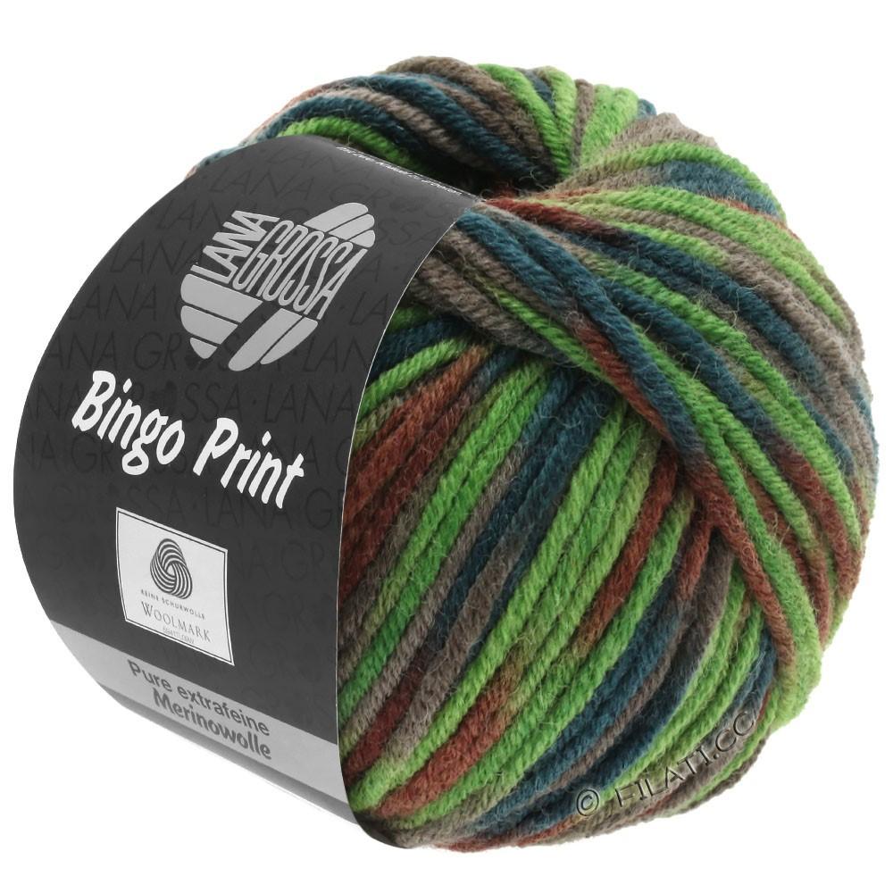 Lana Grossa BINGO  Uni/Melange/Print уни/меланж/принт | 368-светло-зелёный/хаки/каштановый/тёмно-зелёный