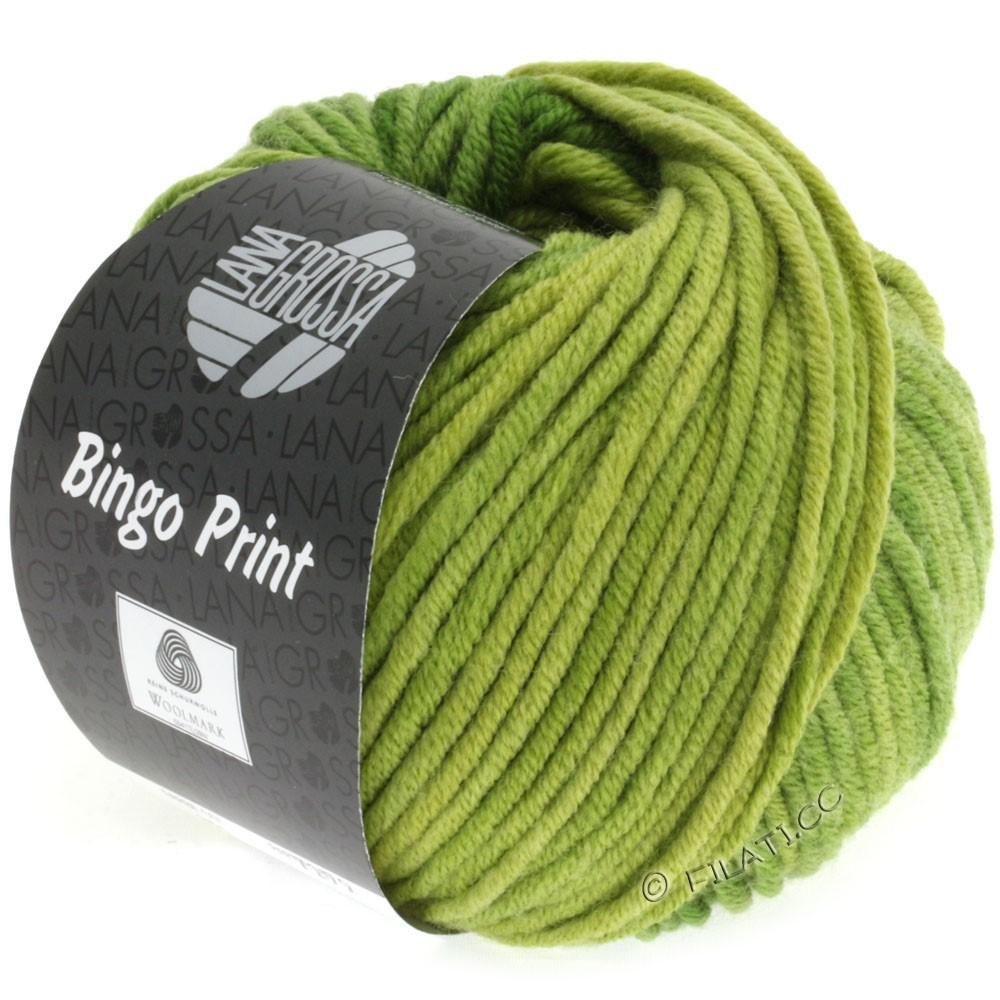 Lana Grossa BINGO Print принт | 610-жёлто-зеленый/зеленый лист /зелёное яблоко
