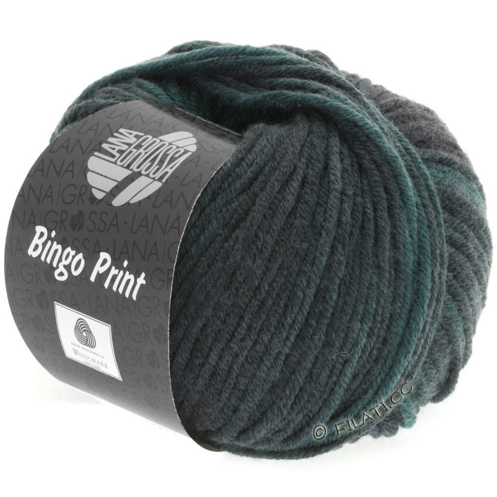 Lana Grossa BINGO  Uni/Melange/Print уни/меланж/принт | 611-пихта/серо-зеленый/чёрный