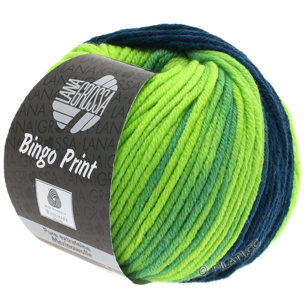 Lana Grossa BINGO  Uni/Melange/Print уни/меланж/принт | 620-петроль/фисташковый/светло-зелёный