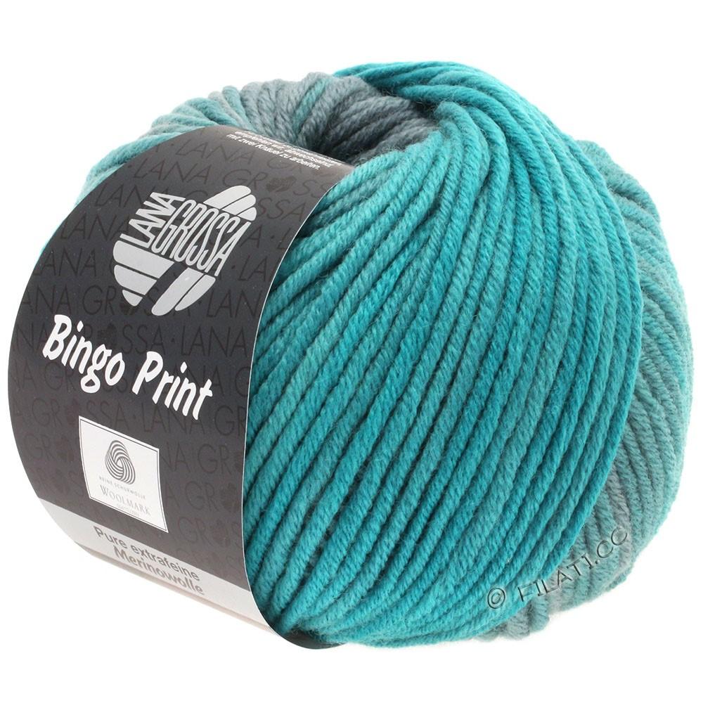 Lana Grossa BINGO  Uni/Melange/Print уни/меланж/принт | 625-петроль зелёный/петроль/серый