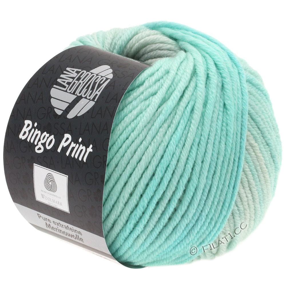 Lana Grossa BINGO  Uni/Melange/Print уни/меланж/принт | 627-бледно-зелёный/мягко-зеленый/серебристо-серый