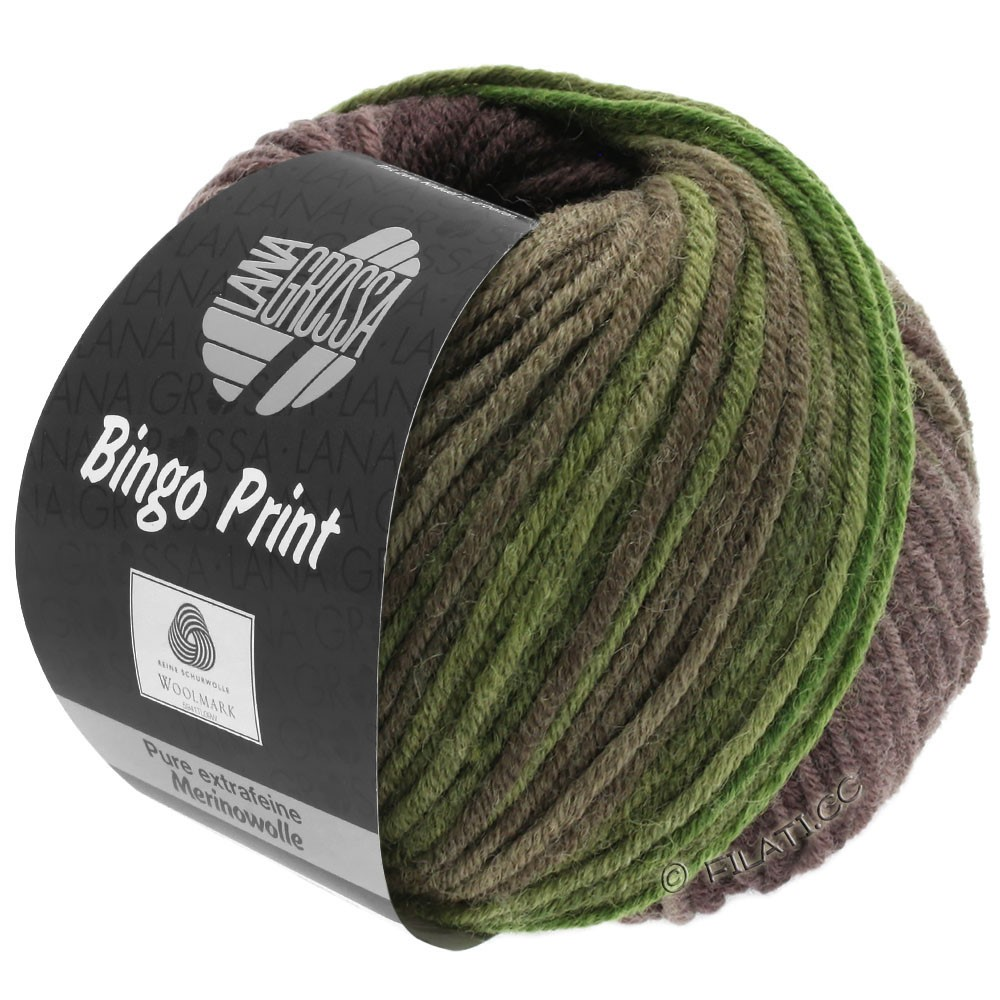 Lana Grossa BINGO  Uni/Melange/Print уни/меланж/принт | 632-хаки/оливковый/серо-коричневый