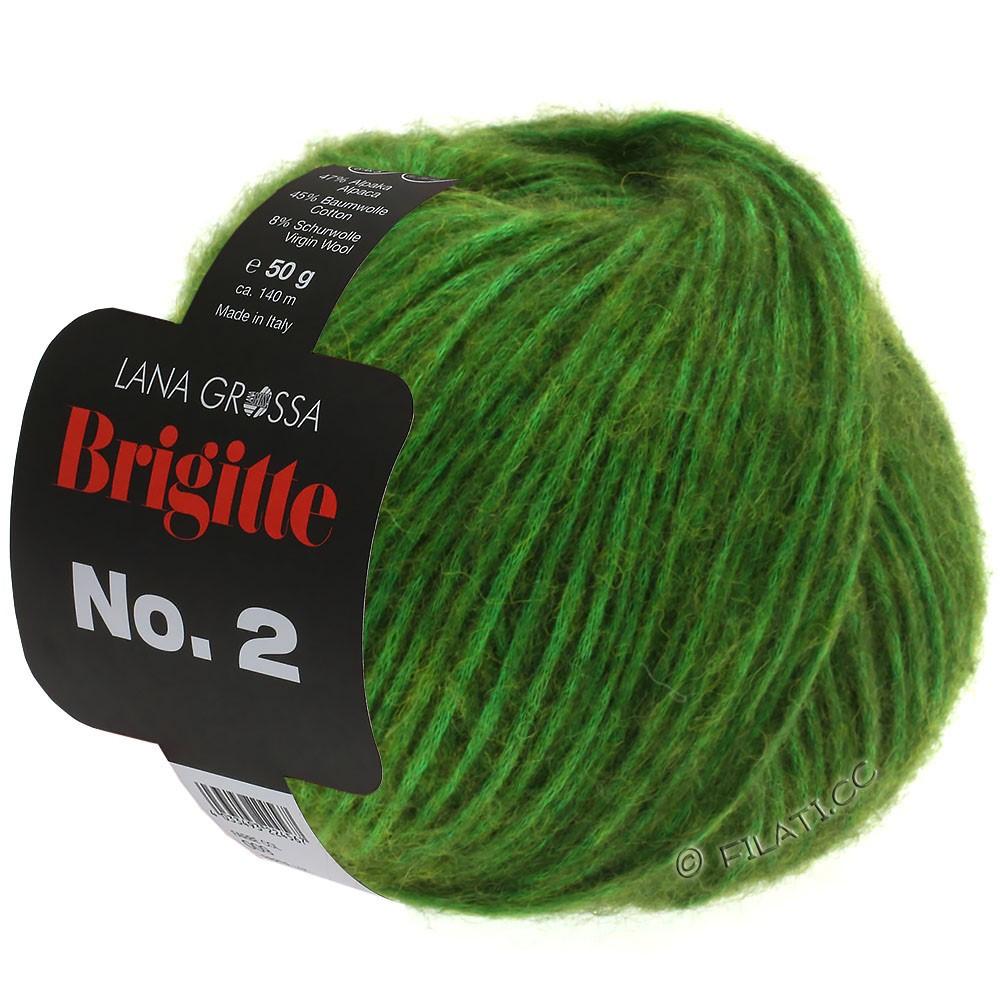 Lana Grossa BRIGITTE NO. 2 | 01-зелёный