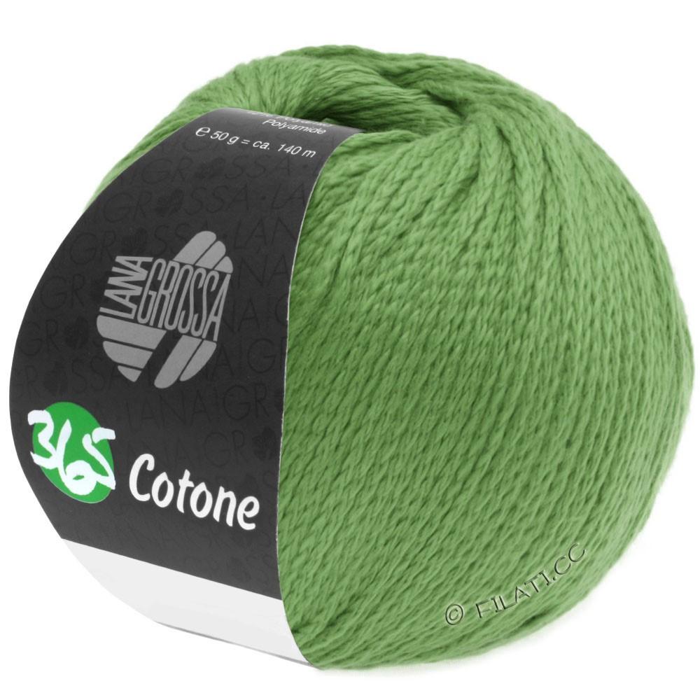 Lana Grossa 365 COTONE   46-светло-зелёный