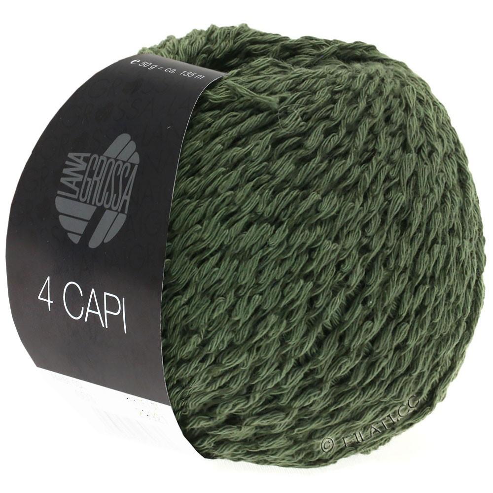 Lana Grossa 4 CAPI | 04-блекло-зеленый