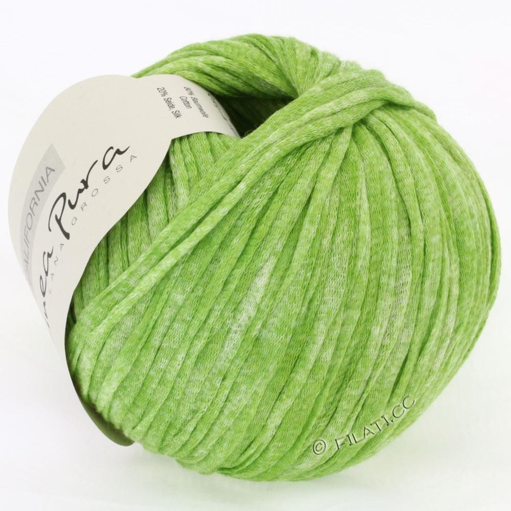Lana Grossa CALIFORNIA Uni/Print (Linea Pura) | 201-светло-зелёный смешанный