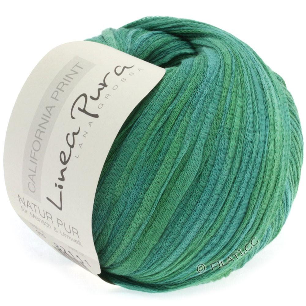 Lana Grossa CALIFORNIA Uni/Print (Linea Pura) | 310-серо-зеленый/трава