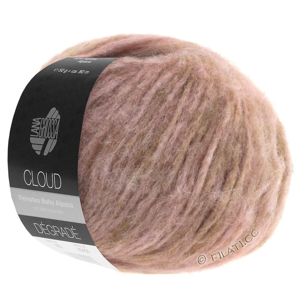 Lana Grossa CLOUD Dégradé | 101-розовое дерево/ветхо-розовый