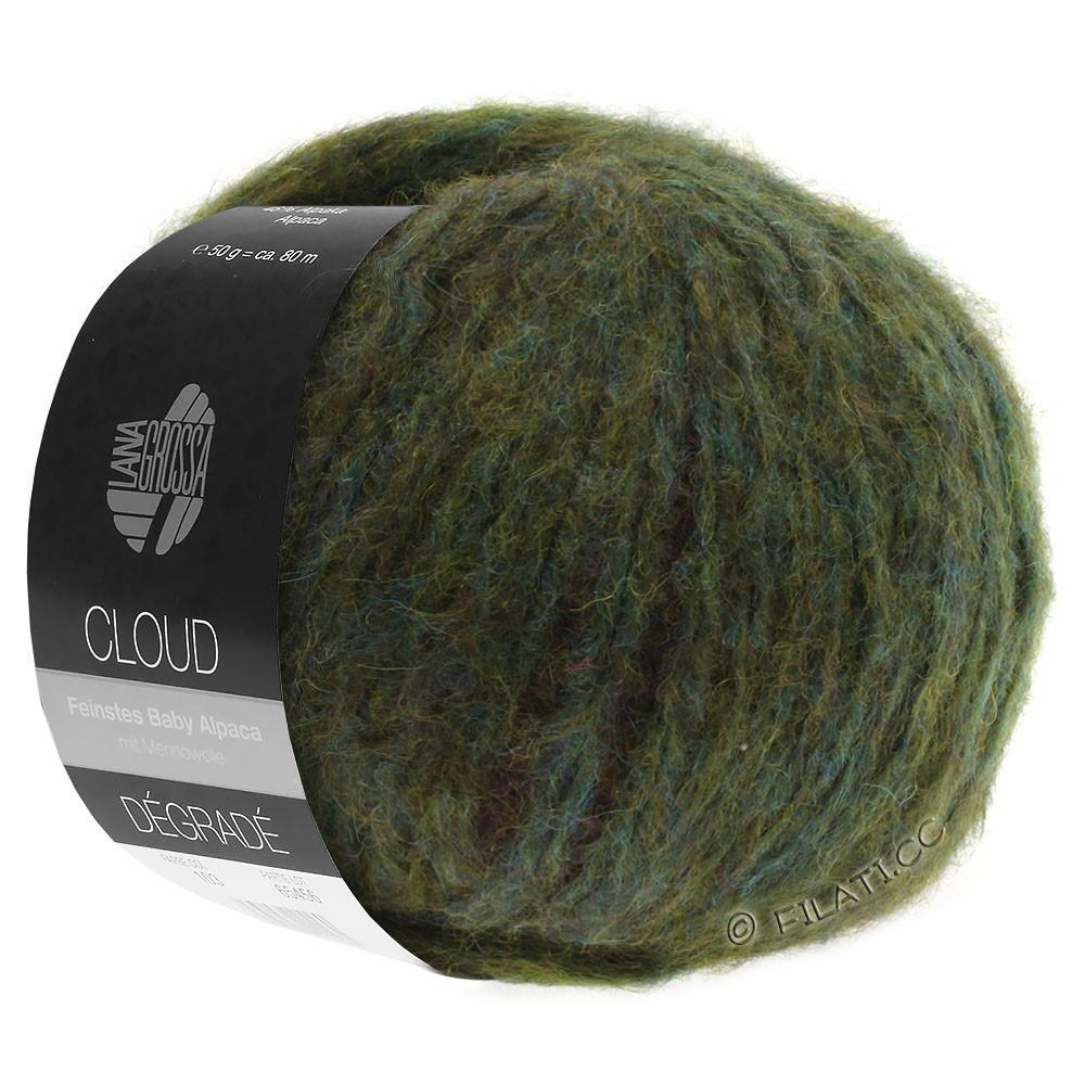 Lana Grossa CLOUD Dégradé | 105-ягодный/оливковый