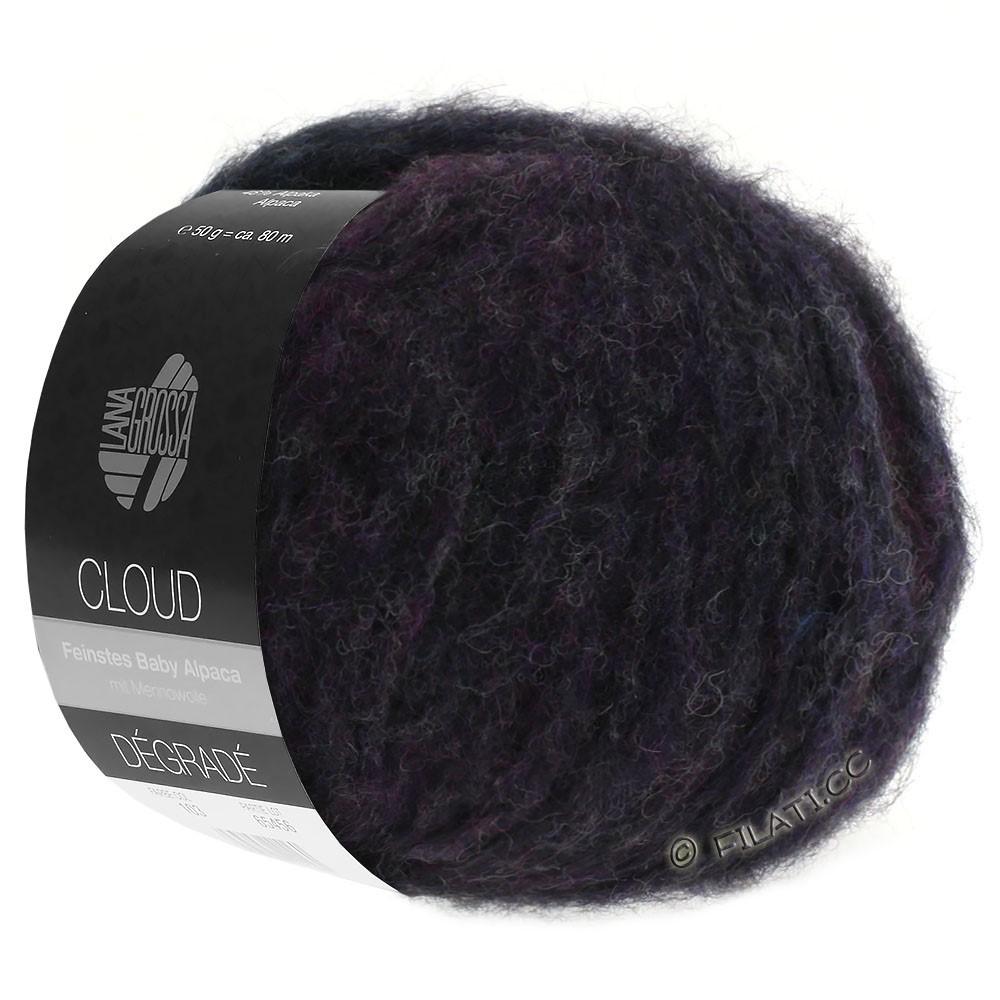 Lana Grossa CLOUD Dégradé | 106-сине-фиолетовый/хаки