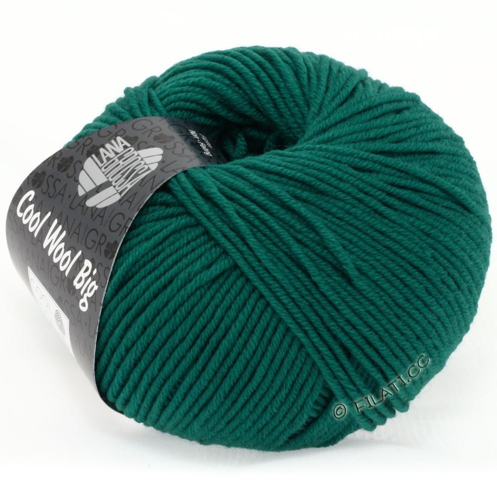 Lana Grossa COOL WOOL Big Uni/Melange/Print уни/меланж/принт | 0940-петроль зелёный
