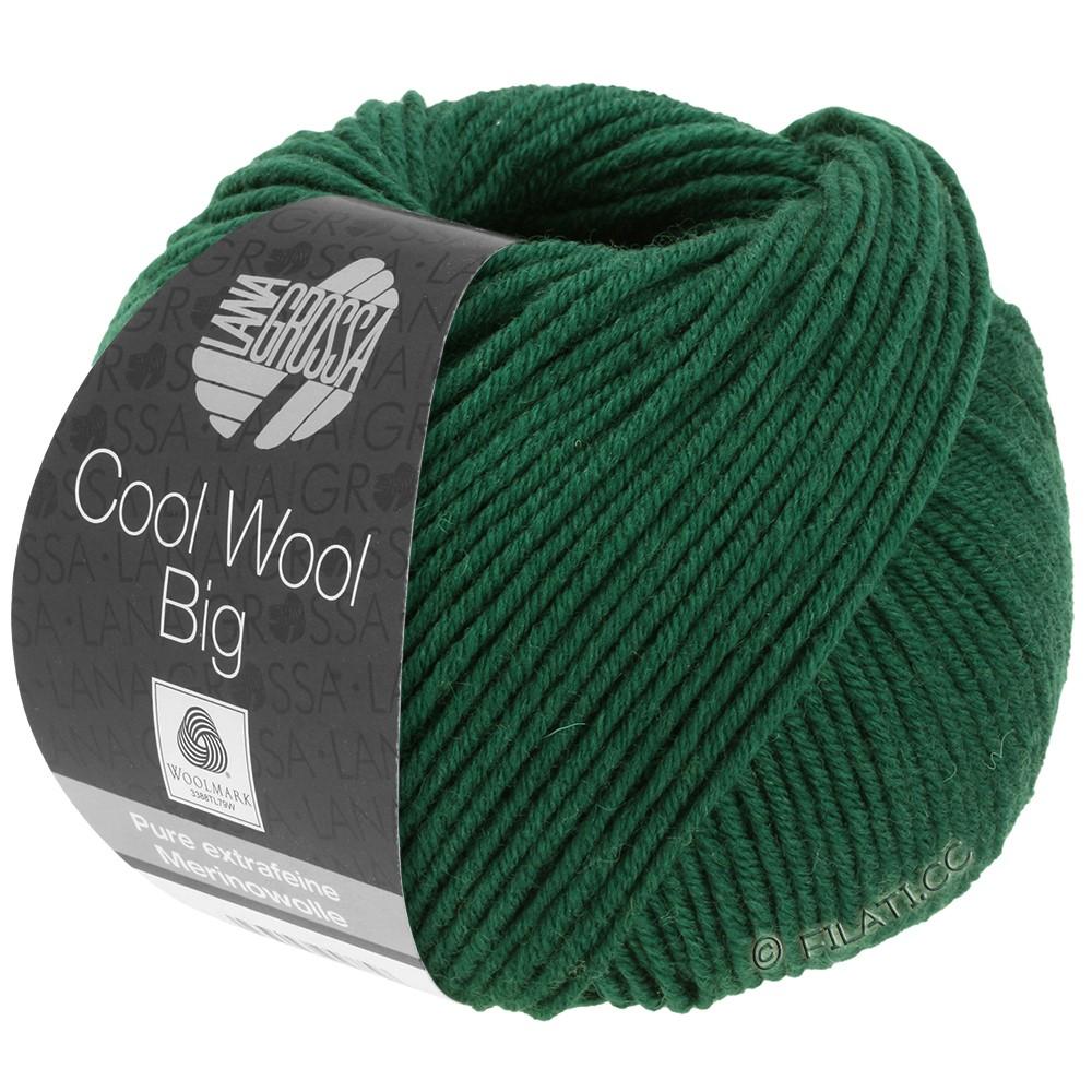 Lana Grossa COOL WOOL Big Uni/Melange/Print уни/меланж/принт | 0949-бутылочный цвет