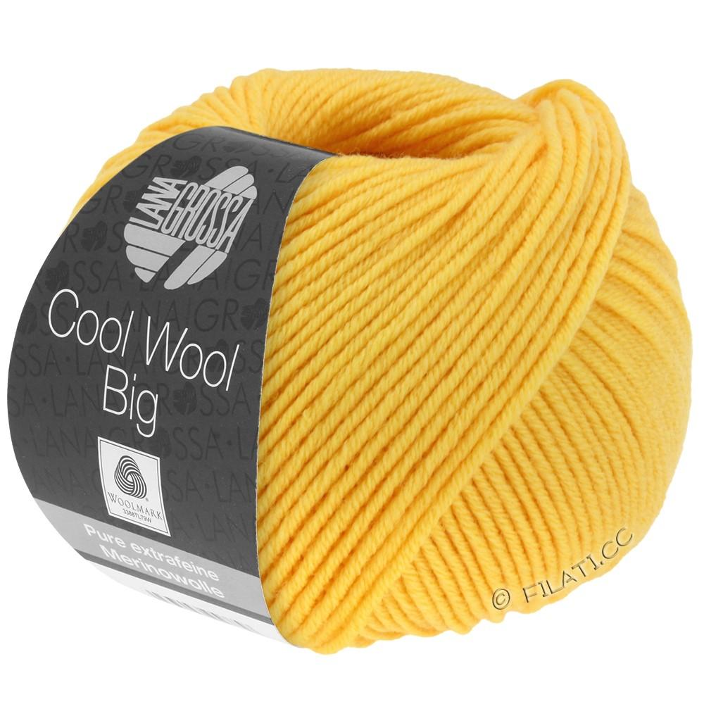 Lana Grossa COOL WOOL Big Uni/Melange/Print уни/меланж/принт | 0958-желтое солнце