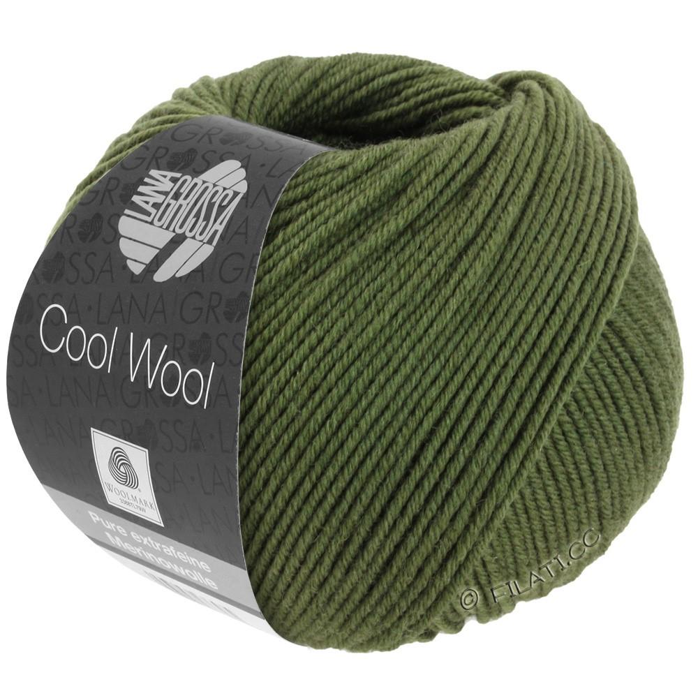 Lana Grossa COOL WOOL   Uni/Melange/Neon | 2042-тёмно-оливковый