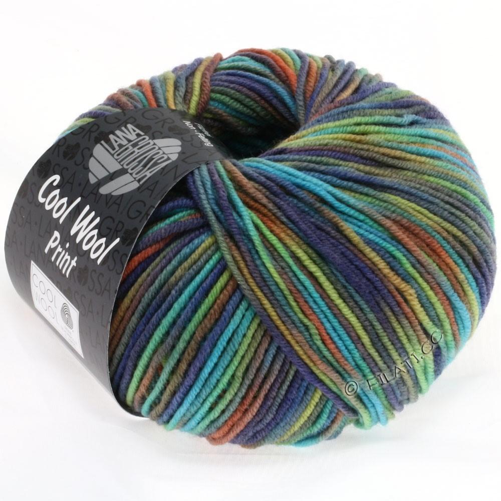 Lana Grossa COOL WOOL  Print | 774-коричневый/оранжевый/светло-зелёный/бирюзовый/джинс