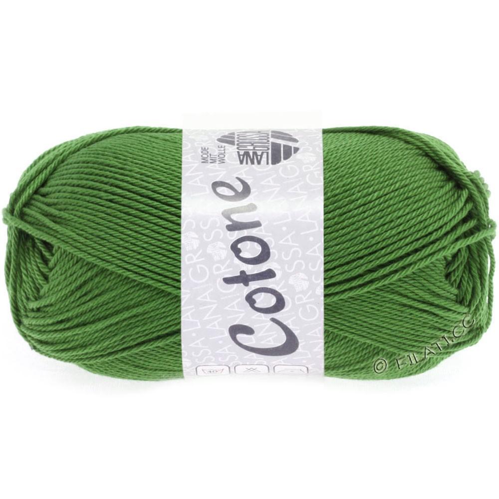 Lana Grossa COTONE | 54-зеленый, как папоротник