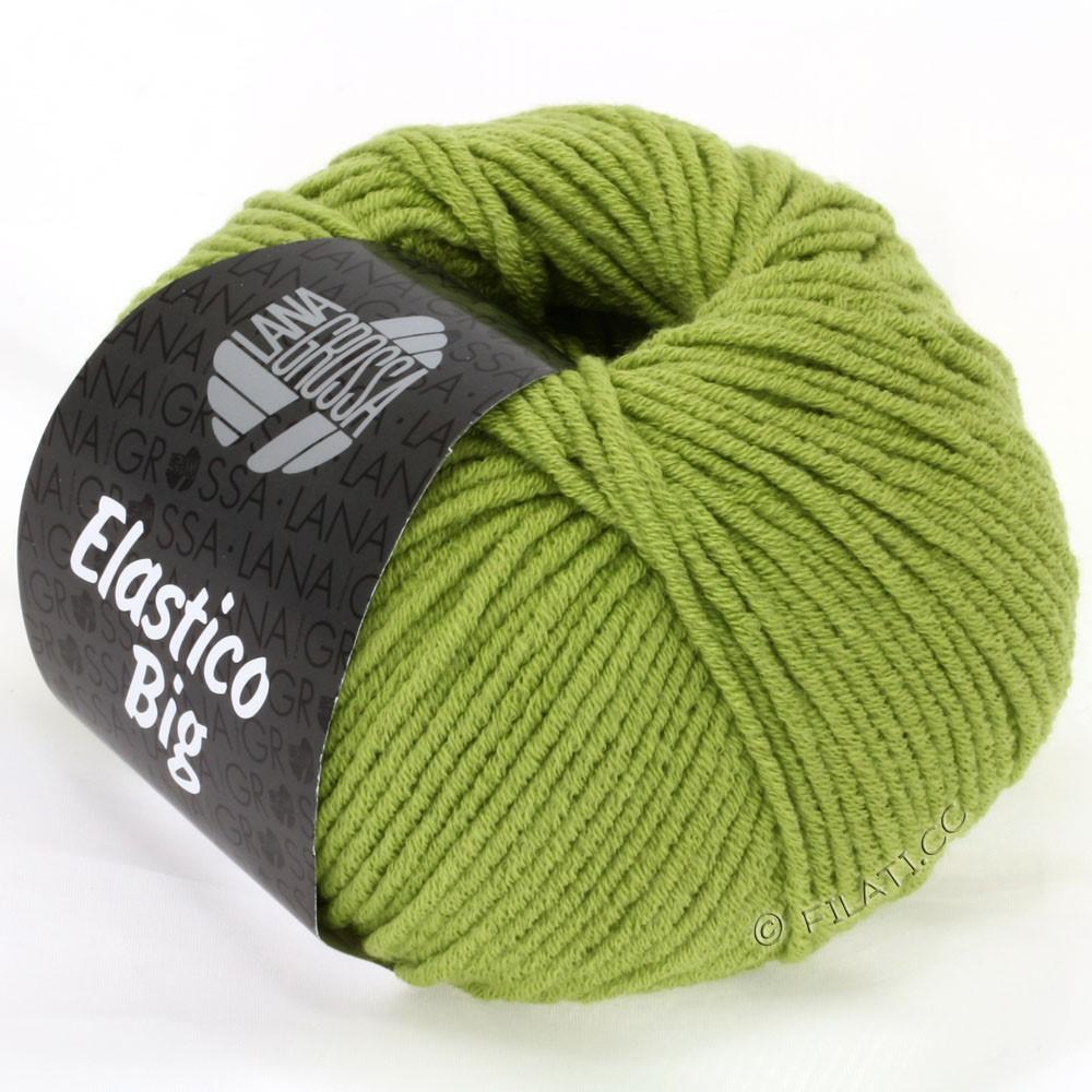 Lana Grossa ELASTICO Big | 07-пастельно-зелёный
