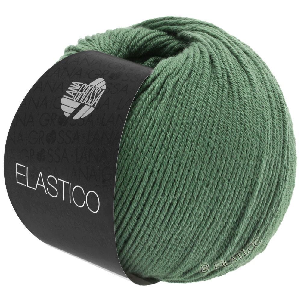 Lana Grossa ELASTICO  Uni/Print уни/принт | 141-зелёный