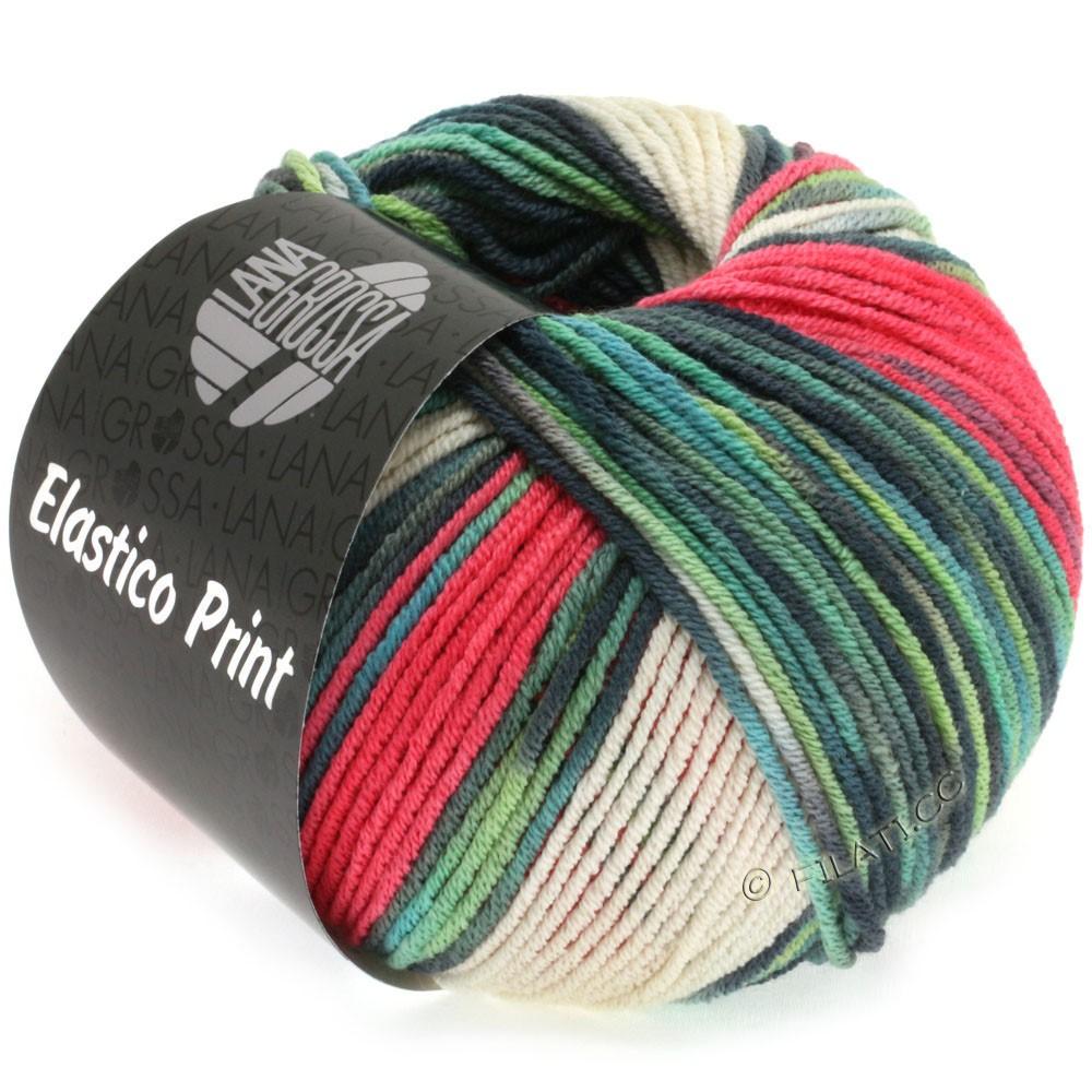 Lana Grossa ELASTICO Uni/Print уни/принт | 513-малина/естественный цвет/мята/светло-серый/серо-зеленый/бензин