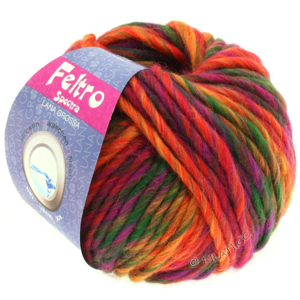 Lana Grossa FELTRO Spectra   805-красный/оранжевый/фиолетовый/бутылочный цвет