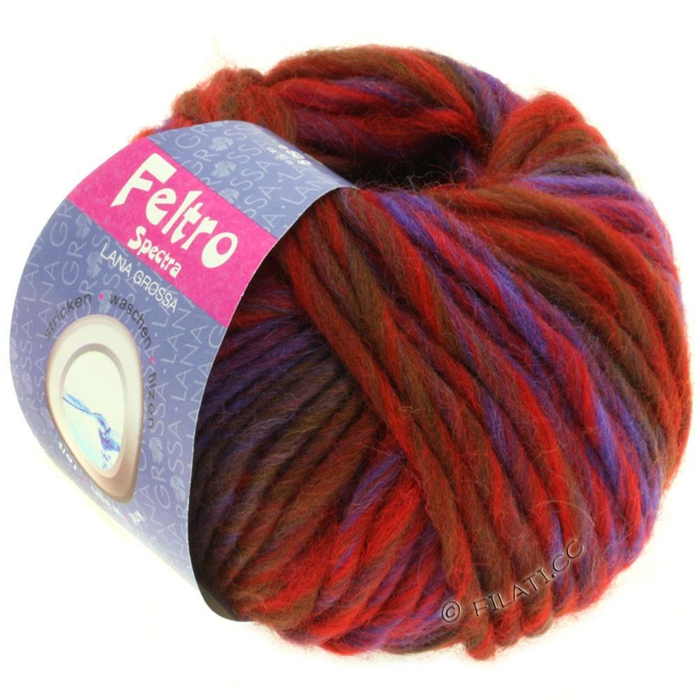 Lana Grossa FELTRO Spectra | 806-красный/синий/фиолетовый/коричневый шоколад