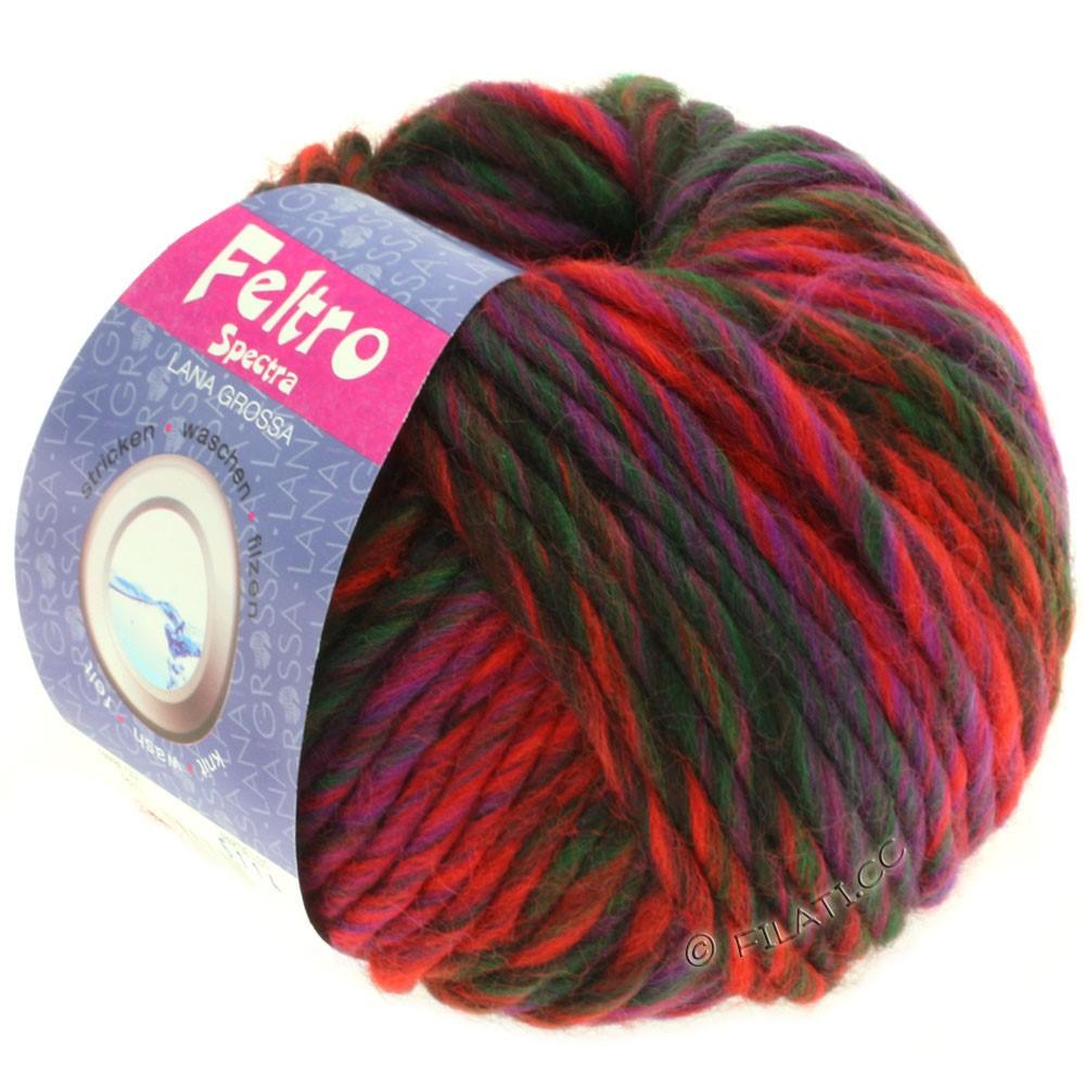 Lana Grossa FELTRO Spectra | 807-красный/фиолетовый/бутылочный цвет/чёрно-коричневый