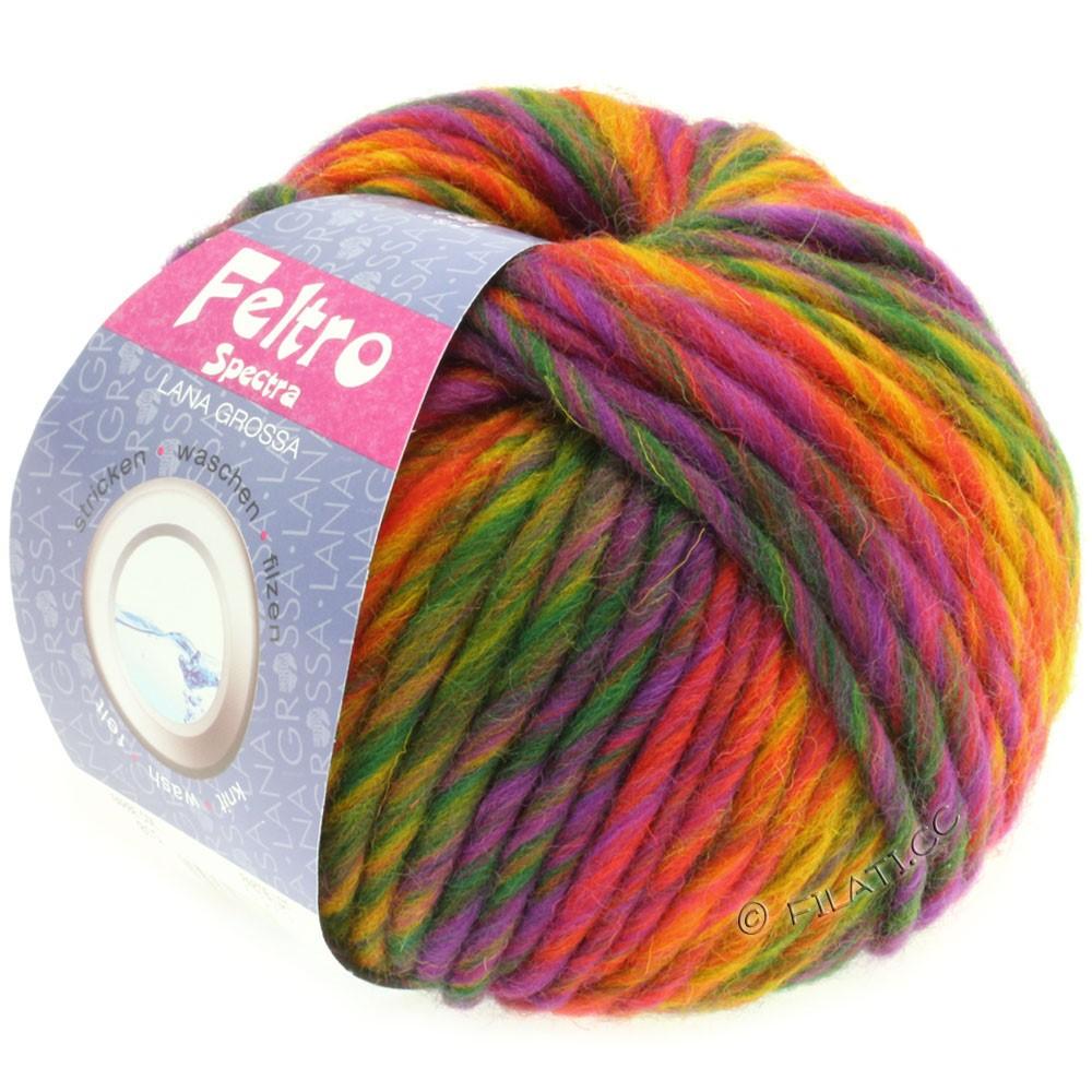 Lana Grossa FELTRO Spectra | 815-жёлтый/оранжевый/красный/фиолетовый/зелёный