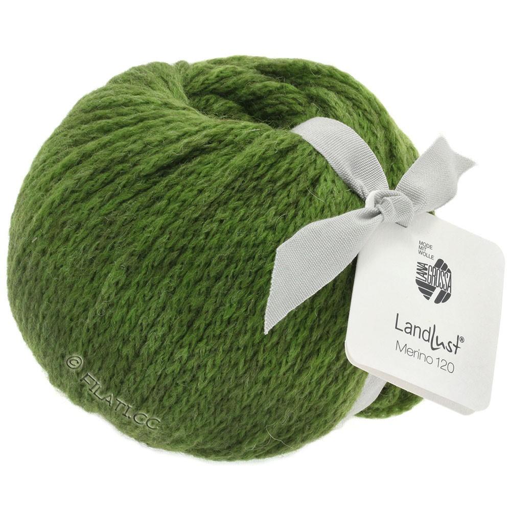 Lana Grossa LANDLUST MERINO 120 | 117-зелёный
