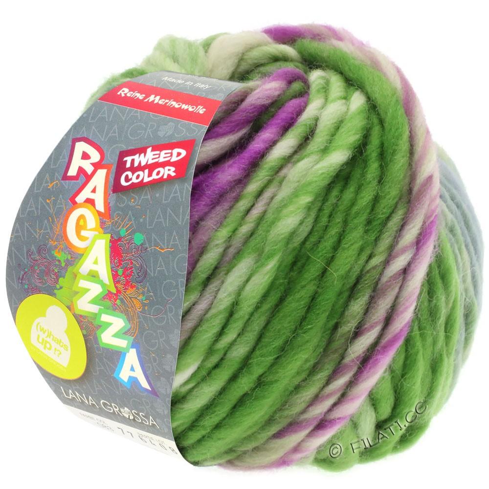 Lana Grossa LEI Tweed Color | 402-серо-голубой/зелёный/красная фиалка меланжевый