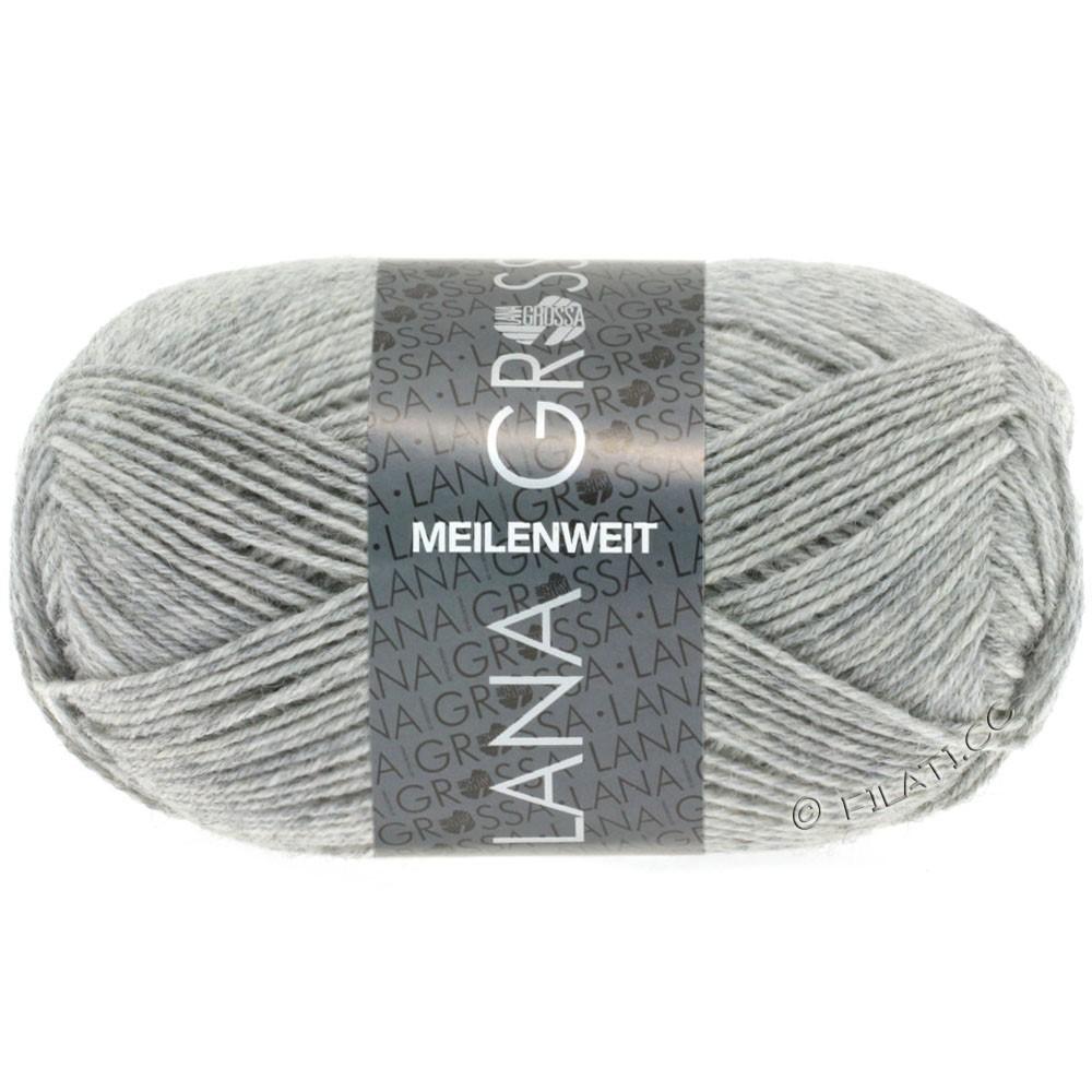 Lana Grossa MEILENWEIT 50g Uni   1346-светло-серый меланжевый