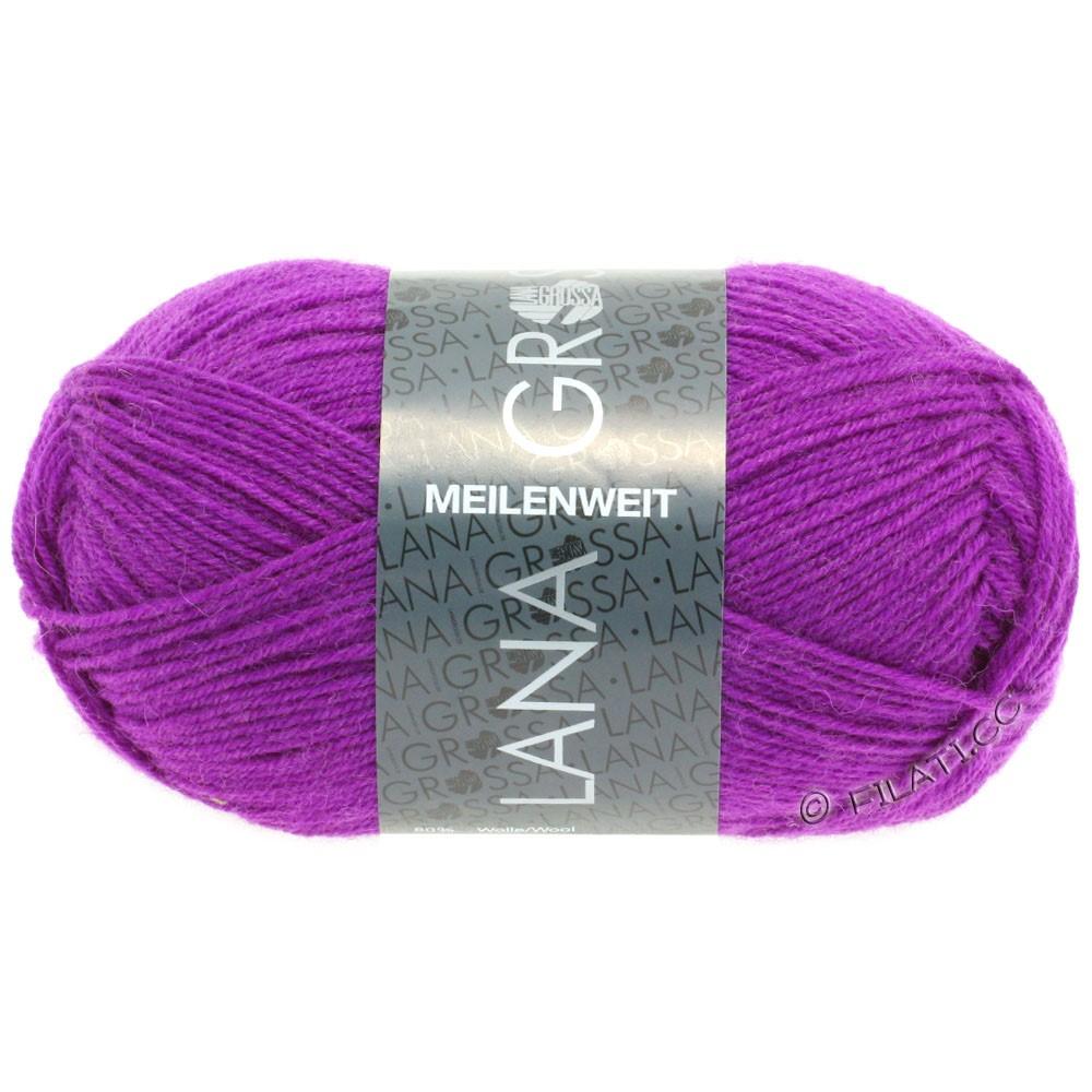 Lana Grossa MEILENWEIT 50g Uni   1361-фиолетовый