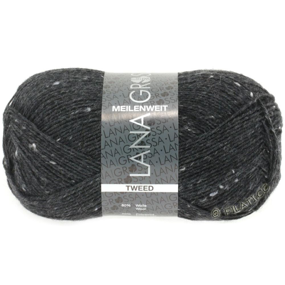 Lana Grossa MEILENWEIT 100g Tweed | 107-антрацитовый