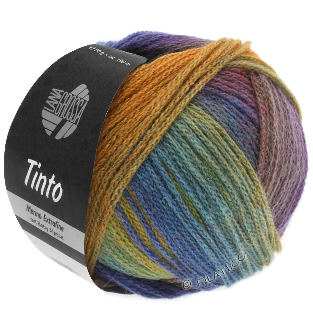 Lana Grossa TINTO | 02-горчично-желтый/бирюзовый/сине-фиолетовый/красная фиалка/зелёный/синий