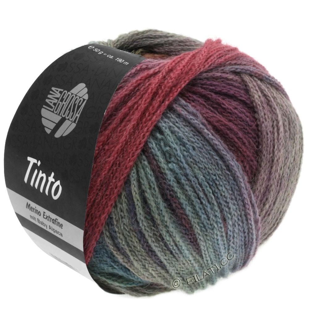 Lana Grossa TINTO | 05-красный/бирюзовый/ягодный/мята/петроль/тёмно-синий