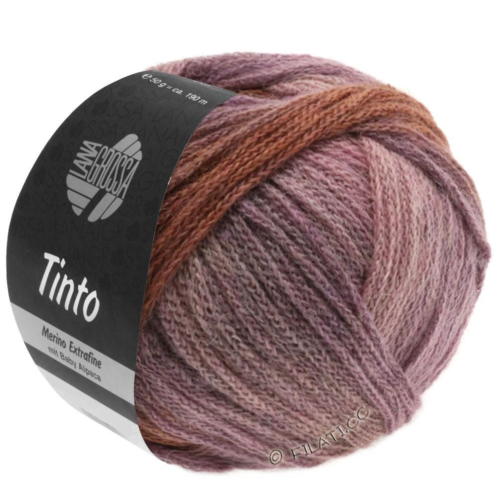 Lana Grossa TINTO | 06-песок/розовый/сирень/коричневый шоколад/фиолетовый
