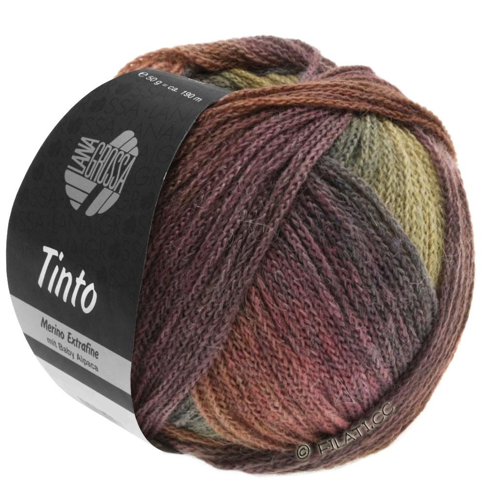 Lana Grossa TINTO | 08-коричневый шоколад/ореховый цвет/горчичный/серо-зеленый/ягодный/баклажановый/слива