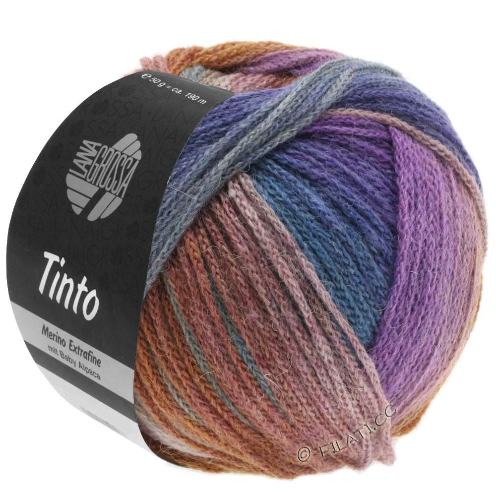 Lana Grossa TINTO | 09-светло-серый/зелёный/пурпурный/коричневый/петроль синий