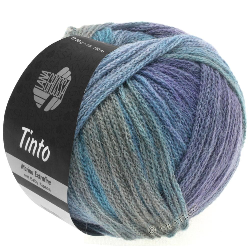 Lana Grossa TINTO | 10-светло-голубой/светло-серый/синий/пурпурный/красно-коричневый/мята