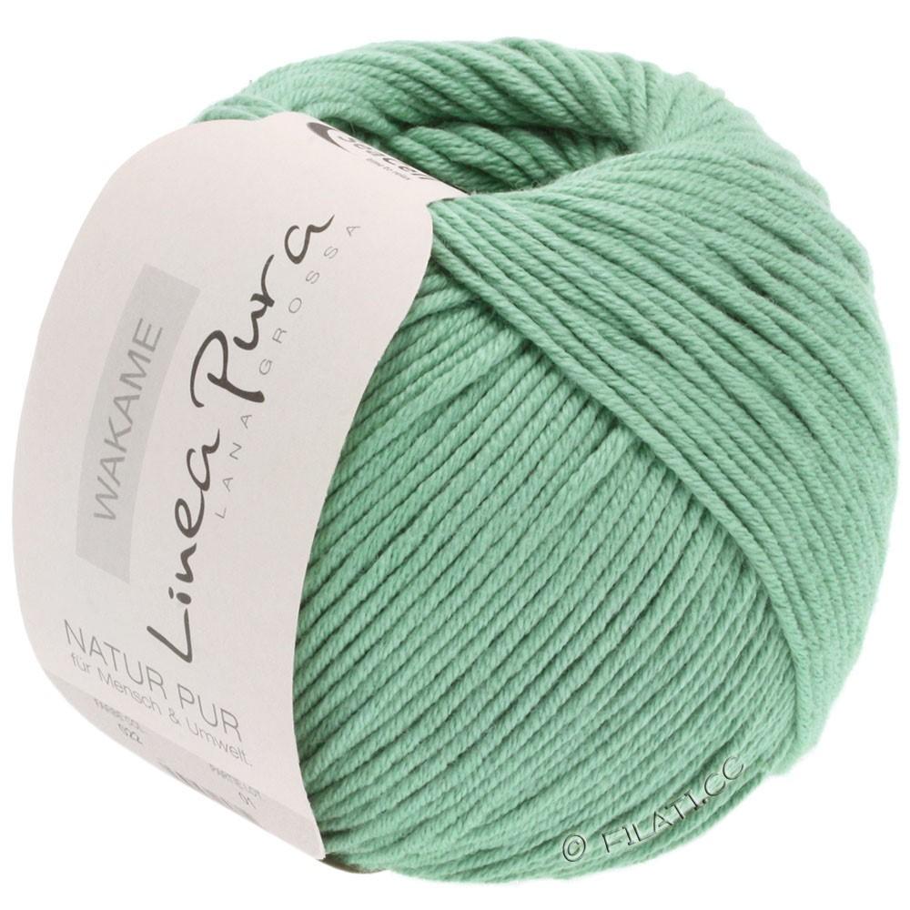 Lana Grossa WAKAME Uni/Print уни/принт (Linea Pura) | 022-серо-зеленый