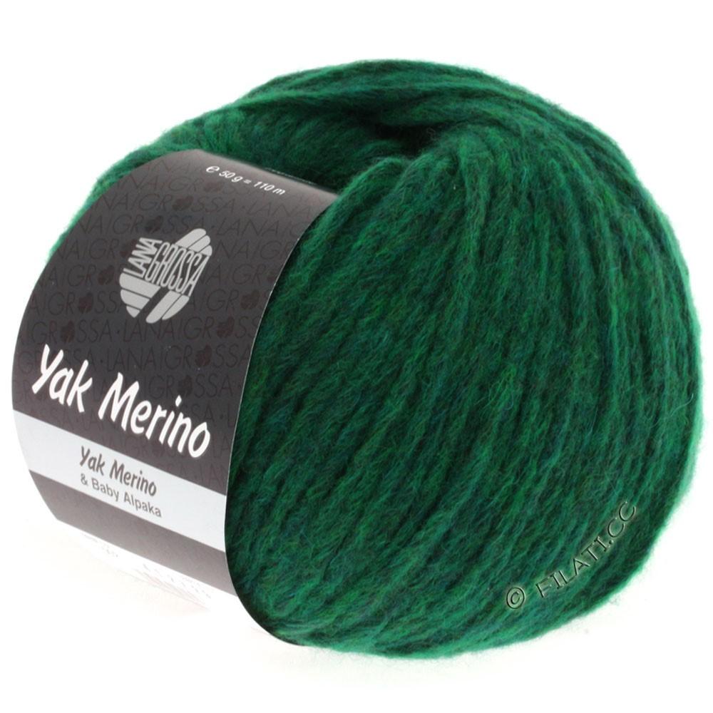 Lana Grossa YAK MERINO   002-зелёный смешанный